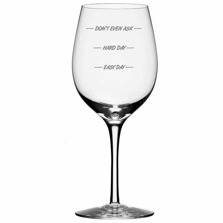 How Was Your Day Fun Wine Glass